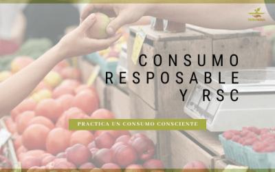 Consumo Responsable y RSC: qué es, principios, consejos para iniciarse en un consumo consciente